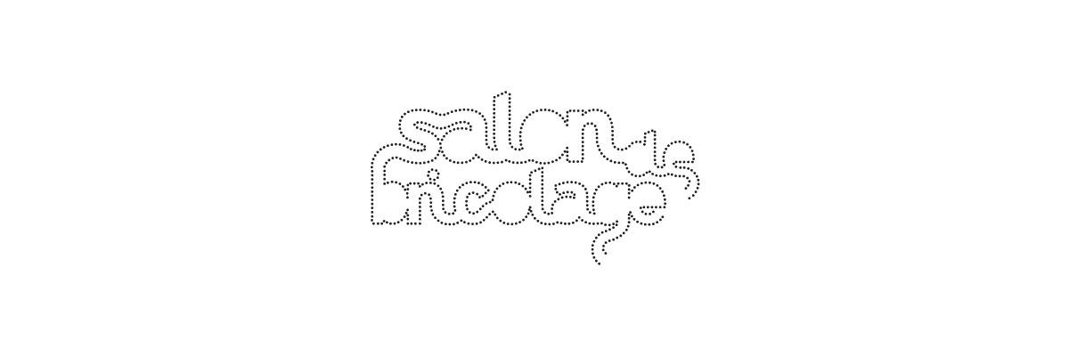 salon_logo